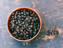 Fresh Berries Of Black Hawthorn In The Black Bowl On The Old Wooden Table Closeup Royalty Free Stock Photo