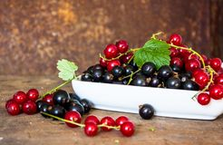 Fresh berries of black and red currant in ceramic bawl. Fresh berries of golden currant in blue boxl on wooden background. Ribes aureum known by the common names royalty free stock image