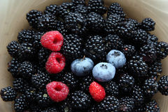 Fresh berries. Royalty Free Stock Image