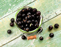 Fresh Berries of Blackcurrant Stock Photo