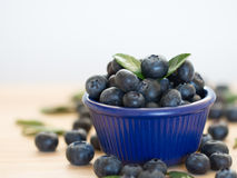 Fresh berries in a blue bowl royalty free stock photography