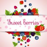 Fresh berries card Stock Photo