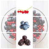 Fresh berries. Collage. Royalty Free Stock Image