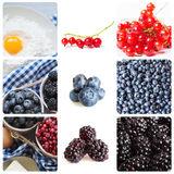 Fresh berries. Collage. Stock Images
