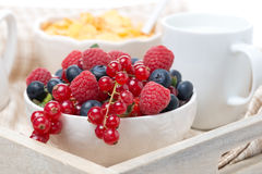 Fresh berries, corn flakes and milk on a tray Stock Photography
