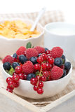Fresh berries, corn flakes and milk on tray Royalty Free Stock Image