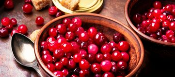 Fresh berries cranberries. Autumn harvest fresh berries cranberries in bowl Stock Image