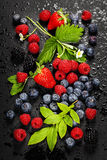 Fresh Berries on Dark  Background. Stock Photos