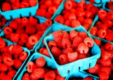 Fresh Berries on Display Royalty Free Stock Images