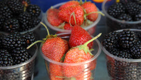 Fresh berries in a disposable plastic cup. Fro sale on a farmer market stock photography