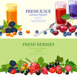Fresh Berries 2 Flat Banners Set Royalty Free Stock Photography