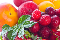 Fresh berries and fruit Stock Photography