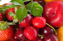 Fresh berries and fruit Stock Image