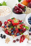 Fresh berries, fruit and cereal for breakfast, vertical Stock Photo