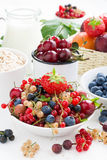 Fresh berries, fruit, cereal and milk for breakfast Stock Photo