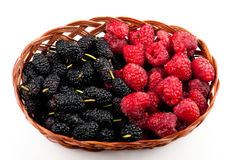 Fresh berries fruits. Fresh raspberries and mulberries in wicker basket against white background Stock Image