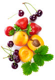 Fresh berries and fruits in still life top view Royalty Free Stock Images