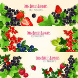 Fresh berries and fruits vector banners set Stock Image