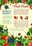 Fresh berries and fruits vector poster Royalty Free Stock Photo