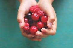 Fresh berries in hands Stock Photos