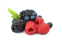 Fresh berries isolated Stock Photos