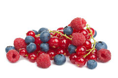 Fresh berries isolated. Over white Stock Photography