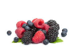 Fresh berries isolated Royalty Free Stock Photos