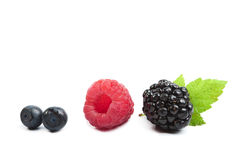 Fresh berries isolated Royalty Free Stock Photo