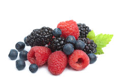 Fresh berries isolated Royalty Free Stock Image