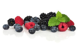 Fresh berries isolated Stock Photography