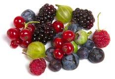 Fresh berries isolated Stock Photo