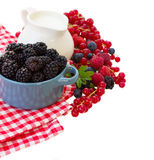 Fresh berries with jug of  milk Stock Images