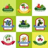 Fresh Berries Labels Flat Icons Set stock illustration