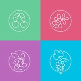 Fresh berries linear icons set 01 Stock Images