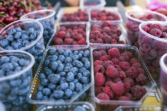 Fresh berries in the market Royalty Free Stock Photo