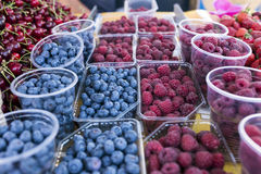 Fresh berries in the market Stock Images