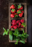 Fresh berries and mint Stock Images