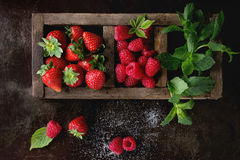 Fresh berries and mint Stock Photos
