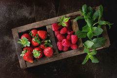 Fresh berries and mint Royalty Free Stock Images