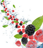 Fresh berries in motion Stock Photography