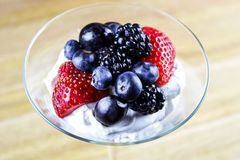 Fresh Berries and Mousse Dessert stock photography