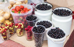 Fresh berries of new harvest ready to sale at the local farmers Royalty Free Stock Image