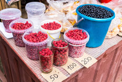 Fresh berries of new harvest ready to sale Stock Image