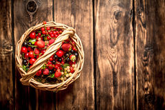 Fresh berries in an old basket. On wooden table. Royalty Free Stock Image