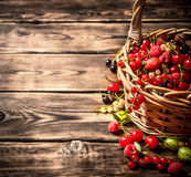 Fresh berries in an old basket. On wooden table. Royalty Free Stock Images