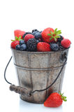 Fresh Berries in Pail Royalty Free Stock Image