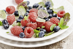 Fresh Berries Royalty Free Stock Photography