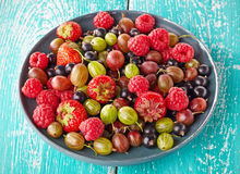 Fresh berries Stock Images