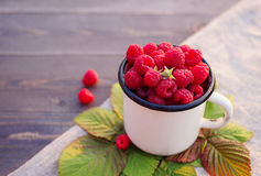Fresh berries of raspberry in an iron mug Stock Images