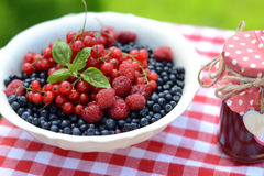 Fresh berries and raspberry jam, served in the garden Stock Photography